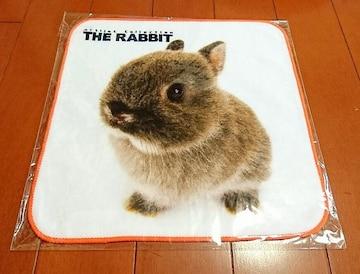 ♪新品袋入り♪THERABBIT(THEDOG)ミニタオル♪ウサギ♪うさぎ