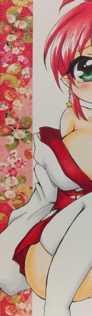 自作イラスト☆マジカルハロウィン♪アリス☆巫女♪パンチラ < アニメ/コミック/キャラクターの