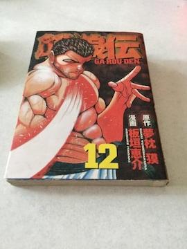 餓狼伝 12 GA-ROU-DEN