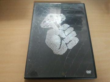 DJ OZMA DVD「アゲ♂アゲ♂ENDLESS☆騎士」氣志團●