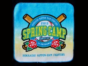 ☆【日本ハムファイターズ】2013 SPRING CAMP ハンドタオル(青)