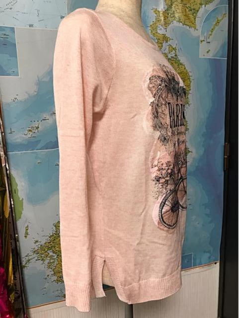 キラキラ刺繍入りセーター 韓国製 フリーサイズ < 女性ファッションの