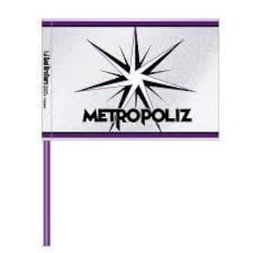即決 三代目 J Soul Brothers METROPOLIZ フラッグ 新品