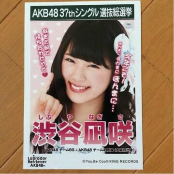 NMB48 渋谷凪咲 ラブラドールレトリーバー 生写真 AKB48