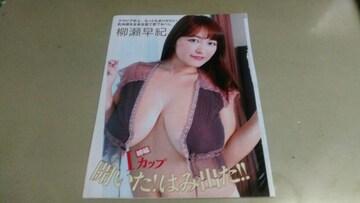 柳瀬早紀 グラビア雑誌切り抜き6P。