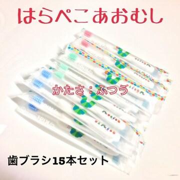 【送料無料】 こども用 歯ブラシ はらぺこあおむし M 15本