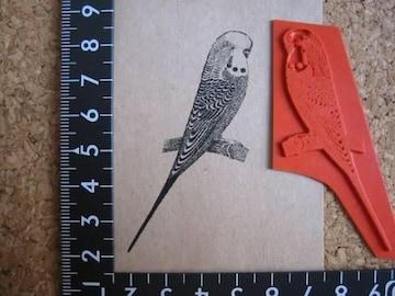 インコ 鳥とり アンマウント ラバースタンプ