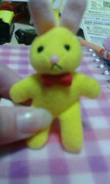 うさぎ黄色