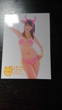 原幹恵 トレーディングカード 046