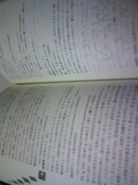 初版本 2ちゃんねる 用語辞典2典/インターネット 2チャンネル 言葉 言語 辞書