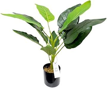 Color Decor ストレリチア オーガスタ 人工観葉植物 花 80�p イ