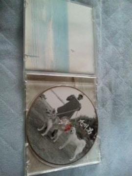 《九州男/HB》【CDアルバム】
