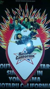 サザンオールスターズ1995ホタルカリフォルニアのパンフレット