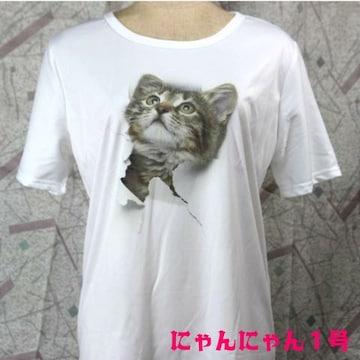 ◆猫大好き◆送料無料★猫Tシャツ 飛び出すネコ 白 L