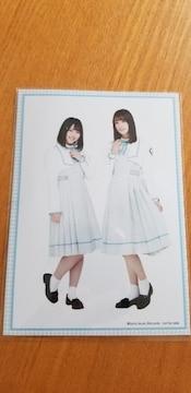 日向坂46  渡邉美穂、佐々木久美 特典生写真