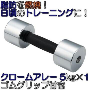 グリップ付 クロームアレー ダンベル 鉄アレイ 5kg×1 STW155
