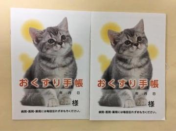 おくすり手帳 2冊セット(ネコ)