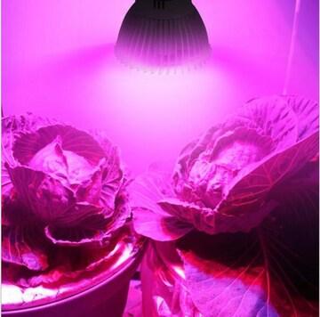植物育成LEDライト セット内容 28灯*4個+コード4本