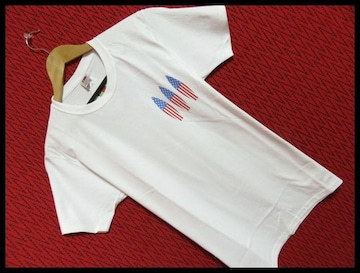 FRUIT OF THE LOOM別注星条旗サーフボード3Tシャツ/WHITE/L