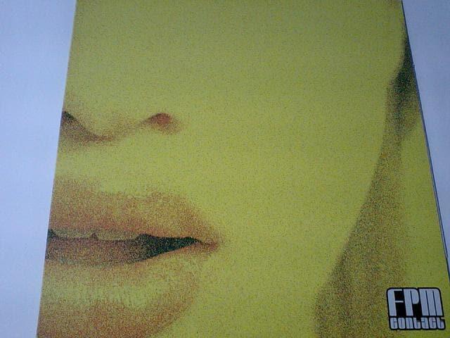 即決! FPM feat.中納良恵 エゴラッピンEGO-WRAPPIN'豪華共演作品  < CD/DVD/ビデオの