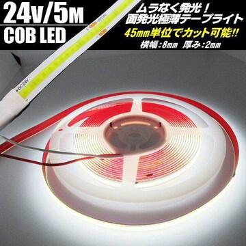 超光量!24v COB面発光 LEDテープライト5m巻 極薄2mm 白色 防水
