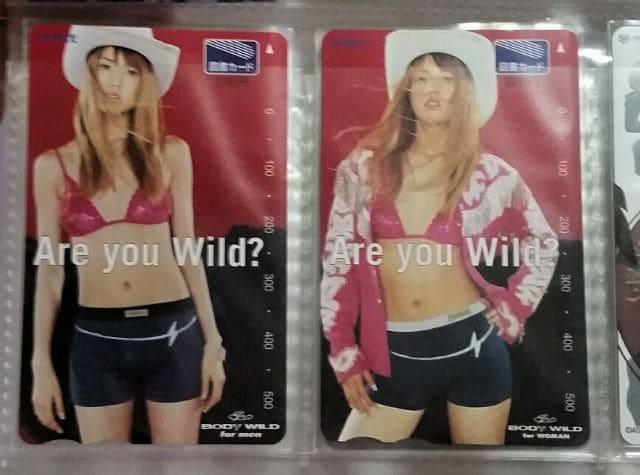 hitomi 図書カード 2種GUNZEグンゼ 非売品  < タレントグッズの