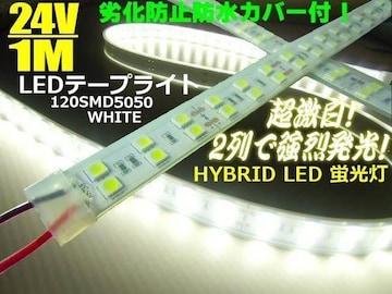 激白 カバー付 LEDテープライト 蛍光灯 ライト 24V 1M/トラック
