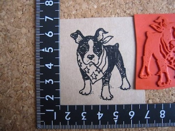 スカーフを着けるボステリ犬 アンマウント ラバースタンプ