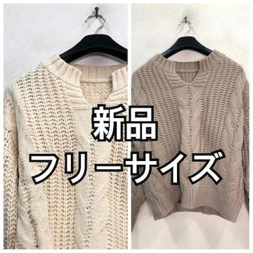 新品☆フリーサイズ♪ざっくり編みおしゃれニットを2枚♪☆h342