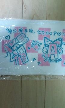 AKB48「神公演予定」コンサートタオル 新品