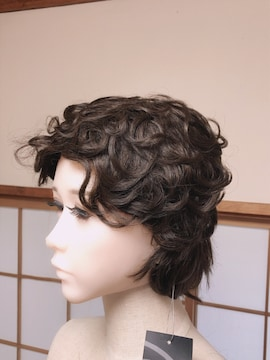 C224 新品 PURE NOA SHI-03 カラー3 人毛 ウィッグ かつら