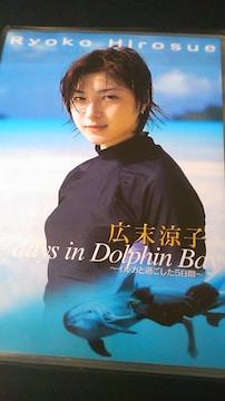 広末涼子〜DVD〜イルカと過ごした5日間〜送料込み