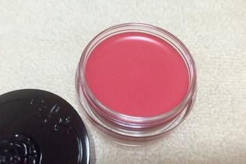ANNA SUI★リップ カラー★02