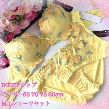 男性様も! B70M 花刺繍黄色 ブラ&ショーツ&Tバック