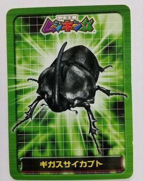 甲虫プロフィールカード ギガスサイカブト 普通郵便送料込