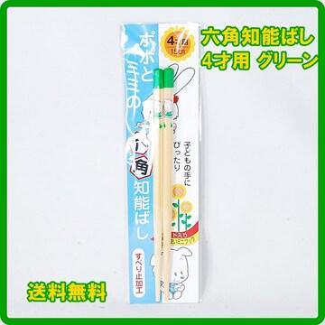 正規 日本製 六角知能箸 4才用 15cm グリーン 子供箸 箸匠せいわ