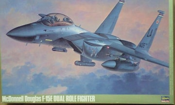 1/48 ハセガワ アメリカ空軍 F-15E デュアル ロール ファイター