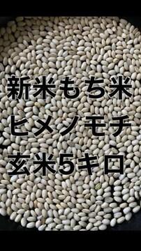 令和3年新米もち米玄米5キロ