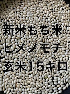 令和3年新米もち米玄米15キロ