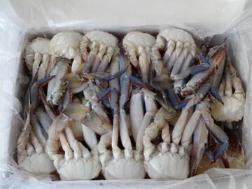 ☆お鍋などに** 切りワタリガニ S 1キロ  冷凍