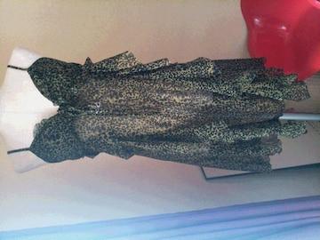 ヒス 定価28000  タグ付き スカルレオパード  フリルワンピ