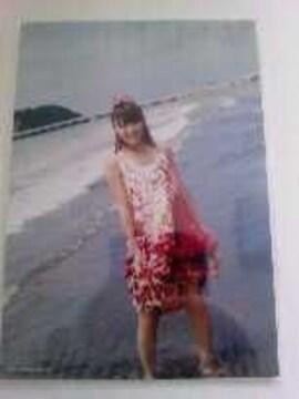 AKB48高橋みなみフォトブック[たかみな]封入公式写真タイプB