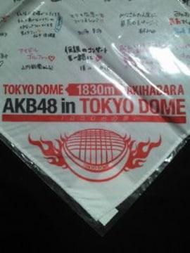 AKB48 東京ドーム ライブ コンサート 寄せ書き バンダナ ホワイト