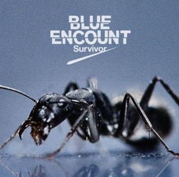 即決 BLUE ENCOUNT Survivor (+DVD) 初回生産限定盤 新品未開封