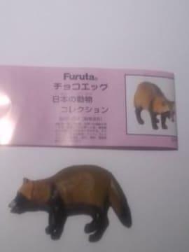 ◆タヌキ(狸)チョコエッグ◆ 日本の動物コレクション/フルタ/海洋堂