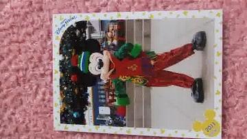 2011TDSディズニーシークリスマスミッキースペシャルフォト
