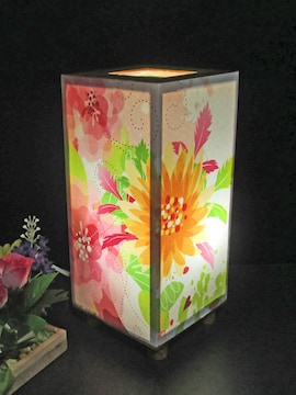 華燭の宿り木 天空の踊り花 SG-096 神秘な灯りの微笑みを!!