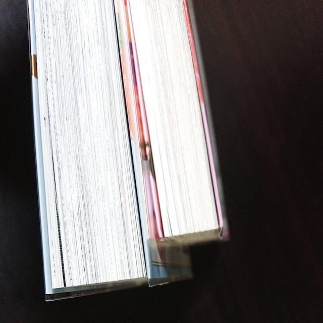 岡野く仔「ロリータ飯」全2巻完結 食いしん坊ロリータコミック < アニメ/コミック/キャラクターの