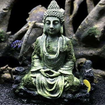 アクアリウム 座禅菩薩 オブジェ