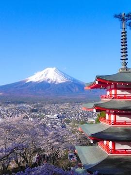 世界遺産 富士山と桜と五重塔 写真 A4又は2L版 額付き 縦